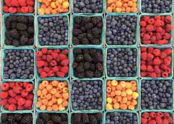A Guide to the Summer's Best Produce