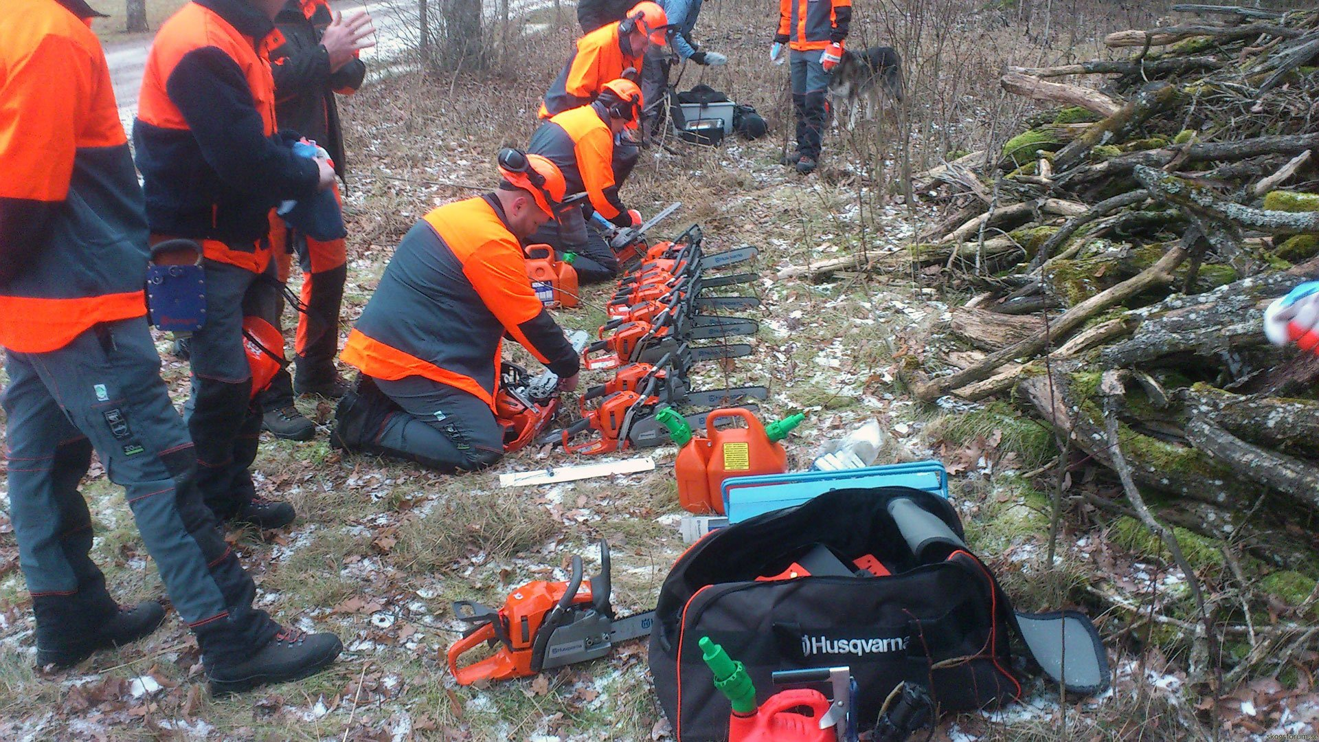 10 Chainsaw Loggers Vs One Tree Harvester