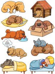 sleeping dogs cartoon clipart vector animals friendlystock background wildlife collection
