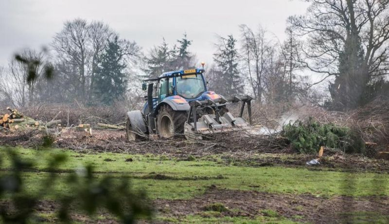 Devastation caused by tree felling in Blackwell, Darlington