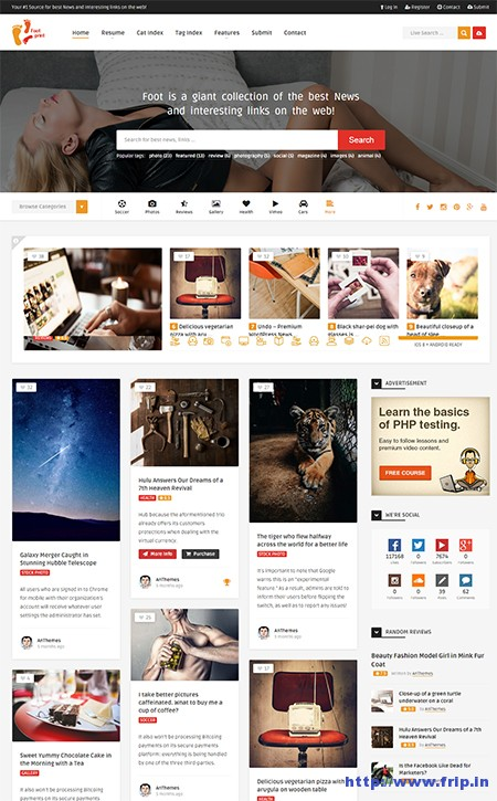 Foot --- Grid-Content-Sharing-Theme