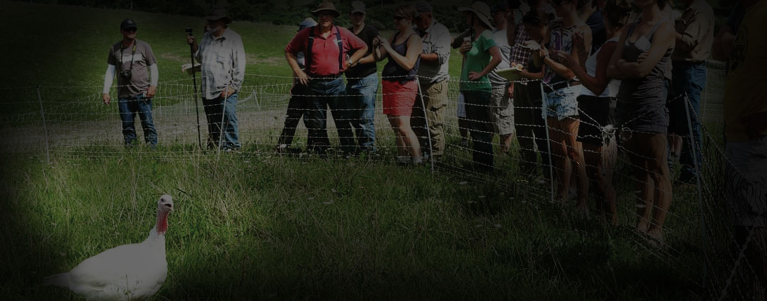 Polyface Farm Tour Q&A Webinar with Joel Salatin   MOTHER EARTH NEWS
