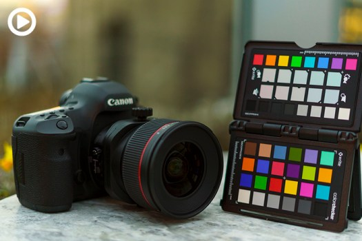 How to Use Your ColorChecker Passport in Capture One
