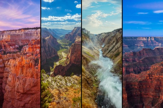 Art Rangers: A New Way to Support the Preservation of National Parks