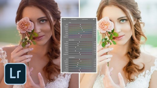 How to Use the HSL Sliders on Your Photos in Lightroom