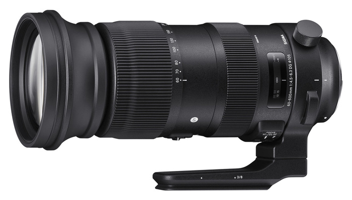 The Lens That Does It All: A Look at the Sigma 60-600mm f/4.5-6.3 Sports