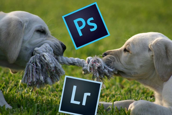 Photoshop Versus Lightroom: Which Do You Need More?