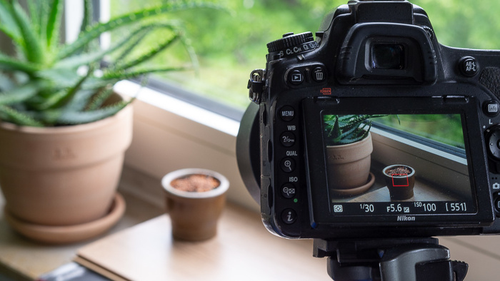 Make Your First Time-Lapse Video at Home