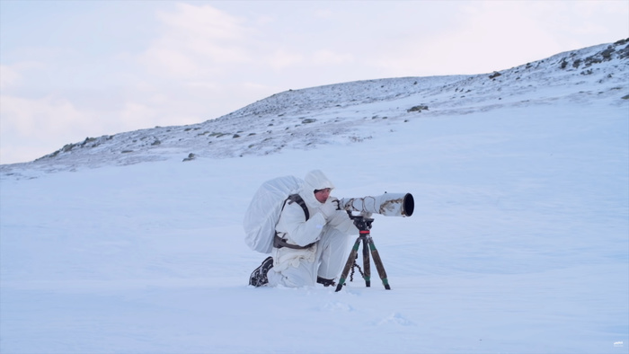 Watch an Incredible Four Day Solo Wildlife Photography Trip in Norway's Wilderness