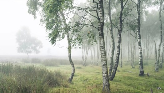 How a Professional Landscape Photographer Edits an Image From Raw to Print