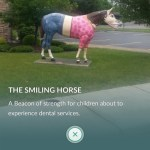The Smiling Horse Funny Pics Funnyism Funny Pictures