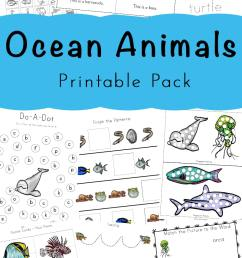 A Super Fun Ocean Animals Printable Pack For Kids [ 1400 x 800 Pixel ]