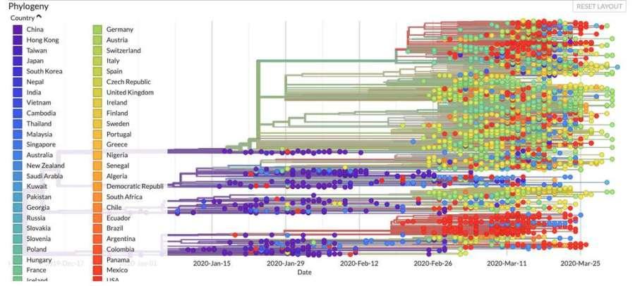 Nombre de génomes séquencés du SARS-CoV-2 selon leur pays d'origine. © Gisaid