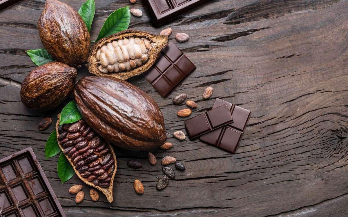 Brève | Nestlé invente un chocolat sans sucre avec des déchets de cacao