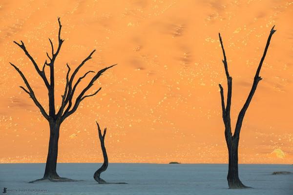 #21 Namib Desert, Namibia