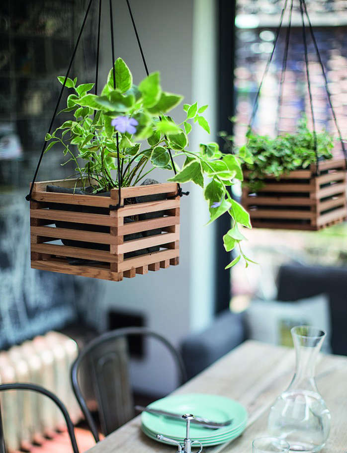 the best indoor plants for clean air and low light settings   15 planter ideas