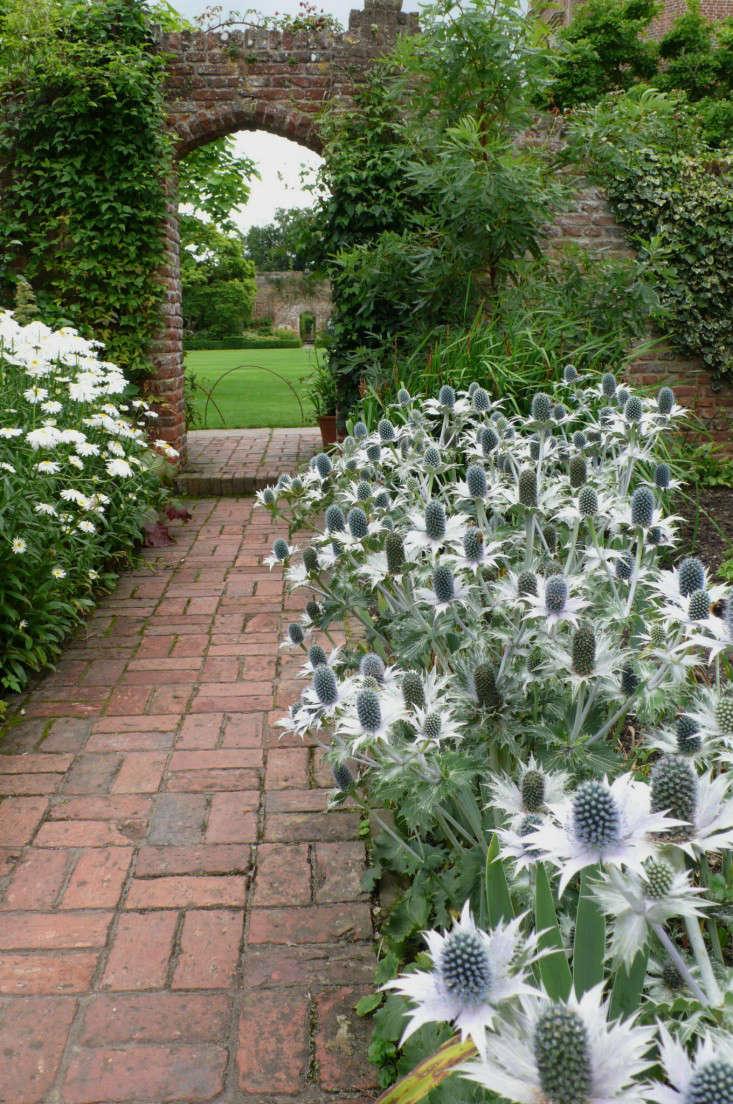 Expert Advice 10 White Garden Ideas From Petersham Nurseries