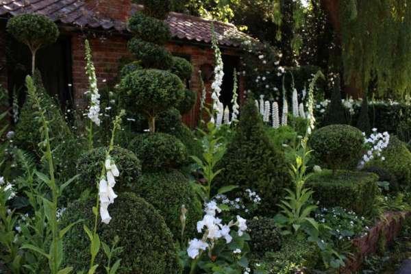 expert advice 10 white garden