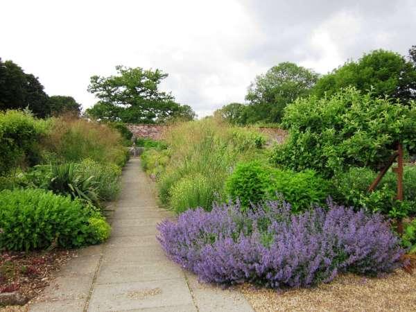 landscaping ideas 11 lavender