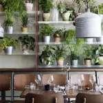Vakst A Greenhouse Restaurant In Copenhagen Gardenista