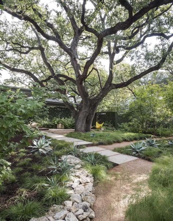 specimen trees worth