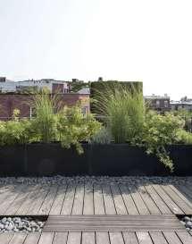 Expert Roof Garden Basics With Designer Julie