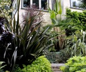 tropical plants for garden