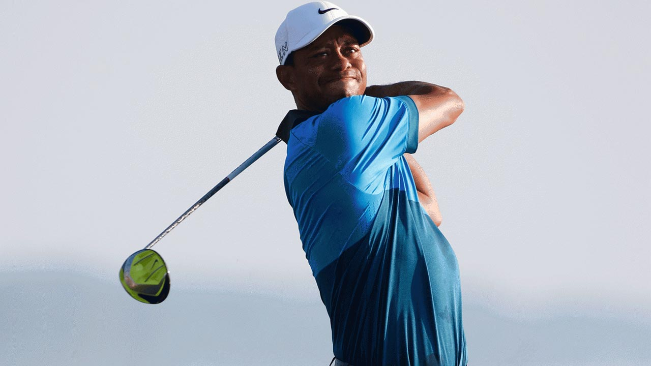 Tiger praised for raising the stakes