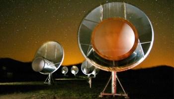 Allen Telescope Array antennas