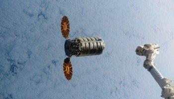 Cygnus and robotic arm