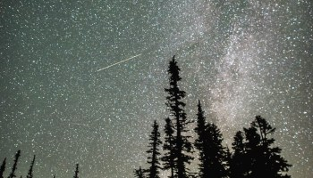 Relive the peak night for the Perseid meteor shower – and catch an encore