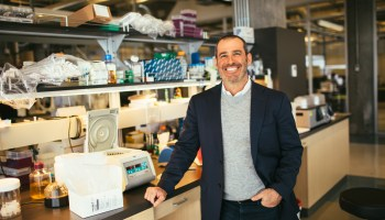 Alpine Immune Sciences raising $17M in advance of merger with Colorado pharmaceutical company