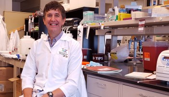 Center for Infectious Disease Research launches $11.5M project to combat 'devastating' drug-resistant malaria
