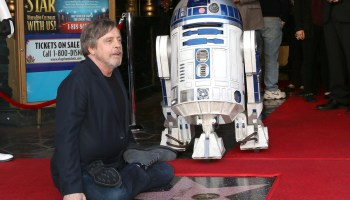 This rocks: Luke Skywalker actor Mark Hamill thanks astronomer for naming an asteroid after him