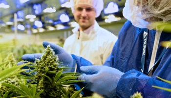 Backed by Seattle firm, Canadian pot company Tilray sees value soar to $20 billion after IPO