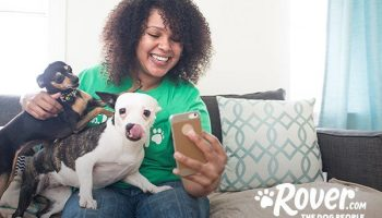 Rover acquires U.K.-based dog care company DogBuddy, accelerating its European expansion