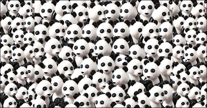 Riuscite a trovare il cagnolino tra i Panda? Ecco la versione lego del  rompicapo che piace alla rete   Radio Deejay