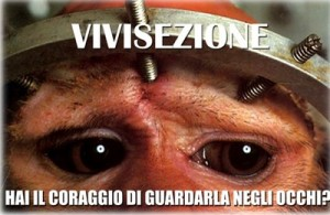 vivisezione_400