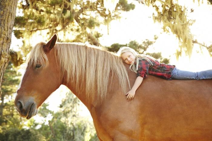 Draft-Horse-Girl-Photo-Small_Fotor