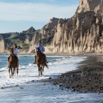 Santorini Horse Riding Trip From Vlychada To Eros Beach Vlichada Greece Getyourguide