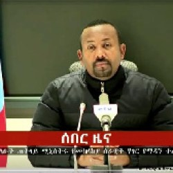 Ethiopian soldiers did not kill any civilians in Tigray, Prime Minister Abiy Ahmed Monday told the federal parliament in what could be the latest accusation of mass murder on the part of the TPLF fighters