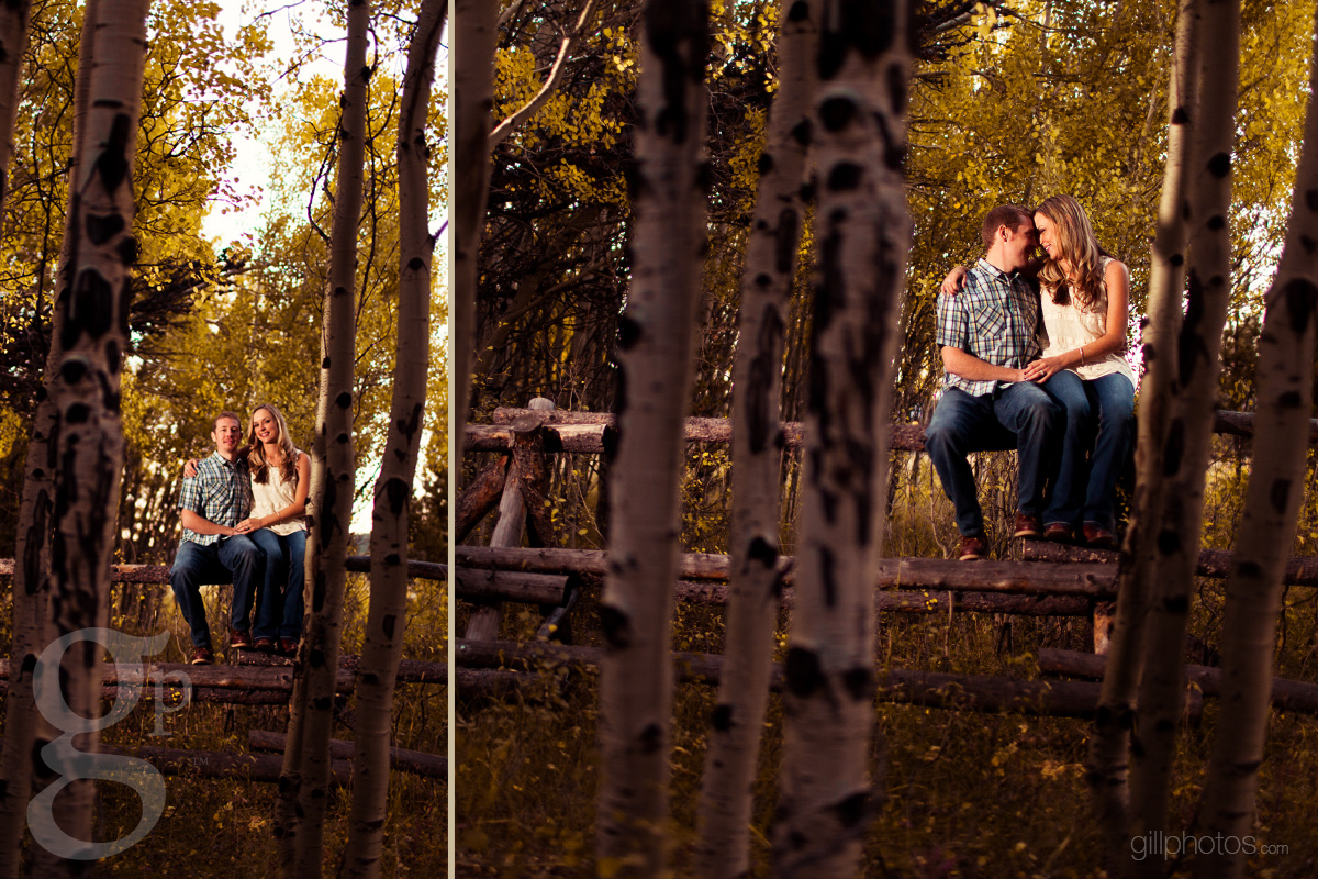 Rachael Amp Andy S Allenspark Engagement Top Colorado Mountain Wedding Photographers Gillespie