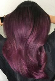 plum hair color guide 57