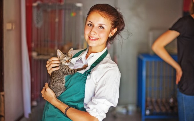 best_jobs_animal_care_worker.jpg