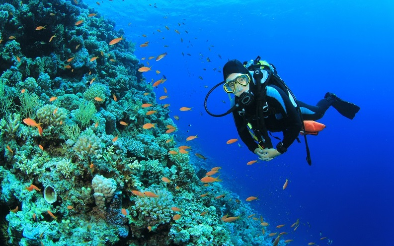 Best jobs scuba diving instructor