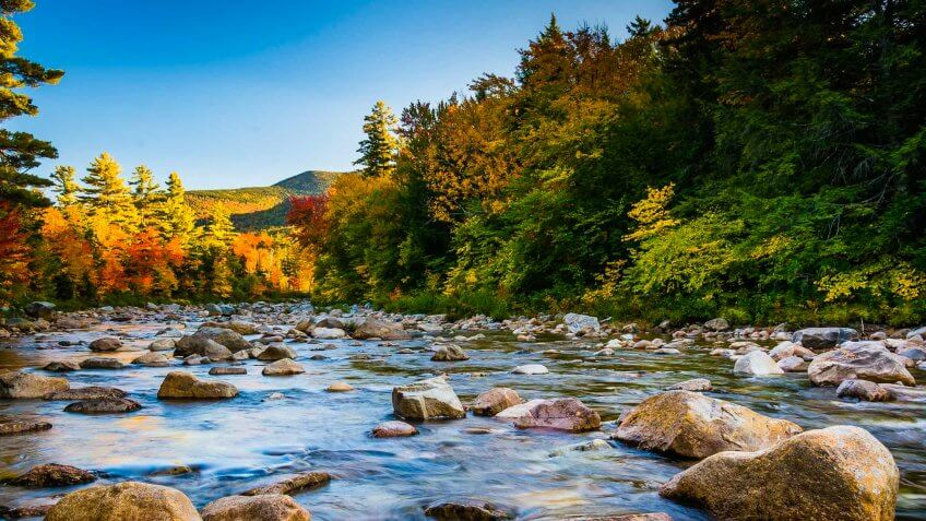 The Most Scenic Fall Road Trips For Your Budget