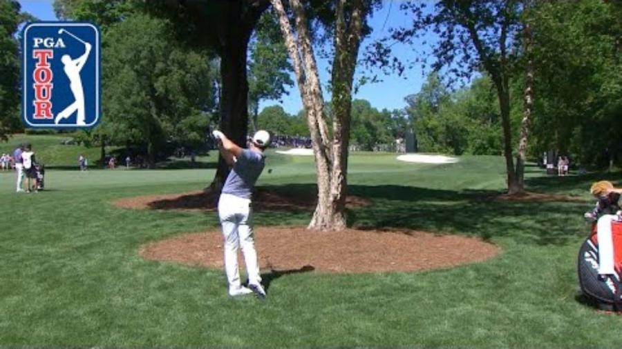 WATCH: Rory McIlroy hits golf shot of the year, then ...