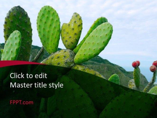 Cactus design PowerPoint template
