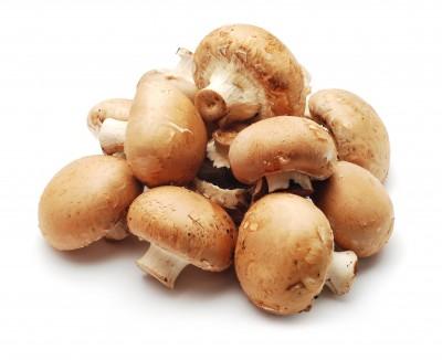 Beginner's Guide to Edible Mushrooms as Medicine