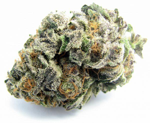 DO-SI-DO Marijuana. Order Weed Online From Sunny Weed